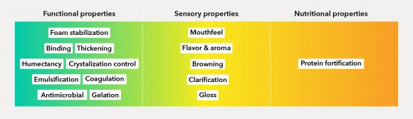 functional, nutritional, and sensory properties of plant-based foods