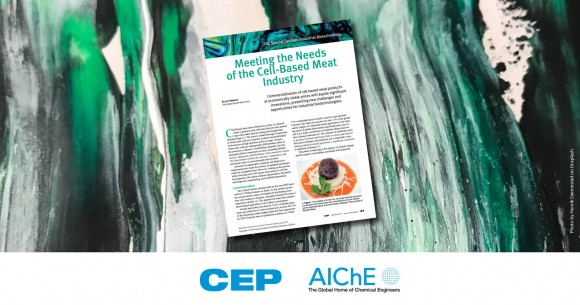 Meeting the Needs of the Cell-Based Meat Industry