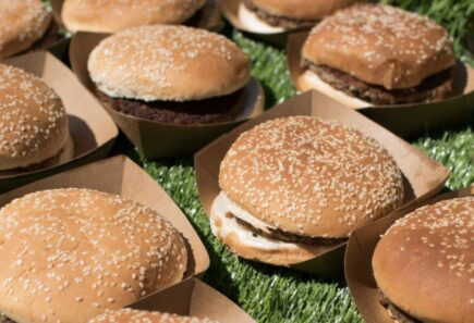 Plant-based burgers on grass