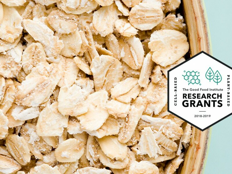 Https://gfi. Org/wp content/uploads/2019/07/crs mari fermented oat protein for plant based meat 2