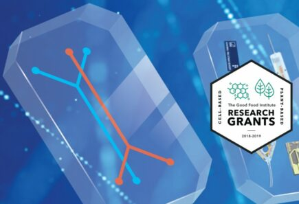 RealSense biosensor for cultivated meat production