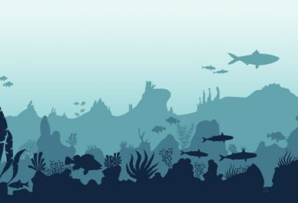 Ocean full of fish