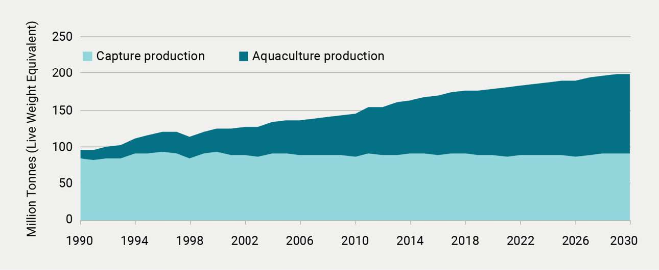 World capture fisheries and aquaculture production, 1990–2030.