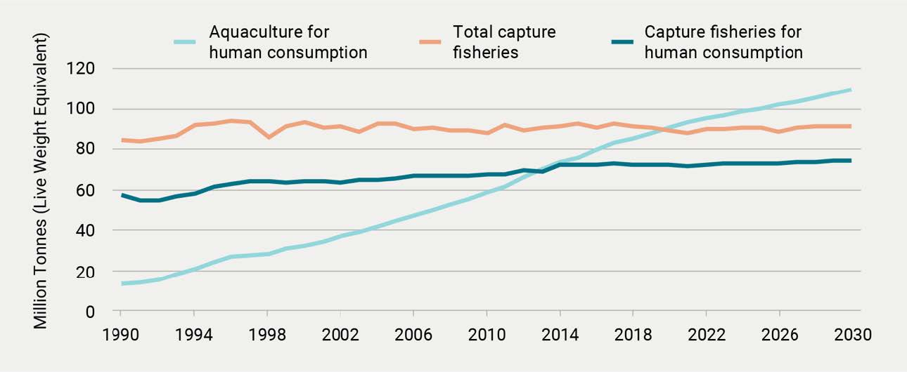 Global capture fisheries and aquaculture production, 1990–2030