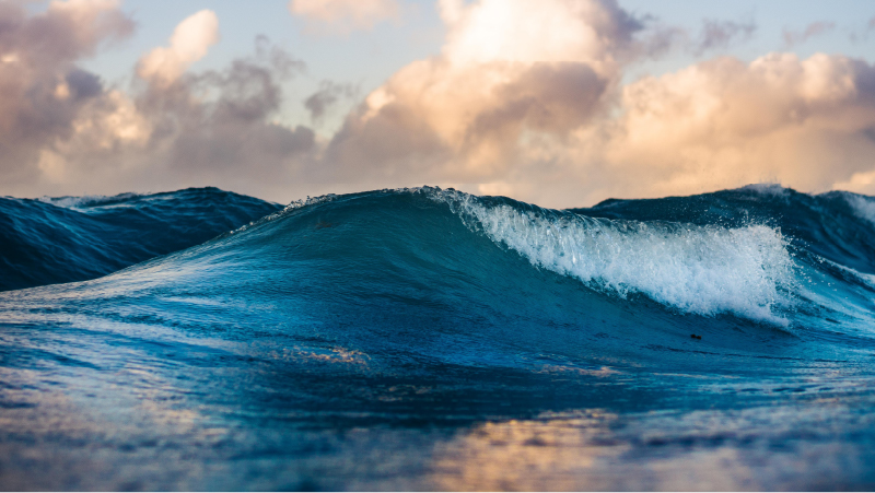 Crashing waves, representing a healthy ocean