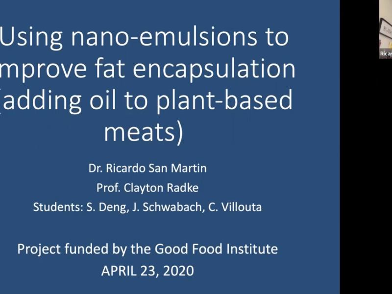 Screenshot from Dr. Ricardo San Martin's webinar on novel approaches to replacing saturated fats used in the production of iconic plant-based meat products