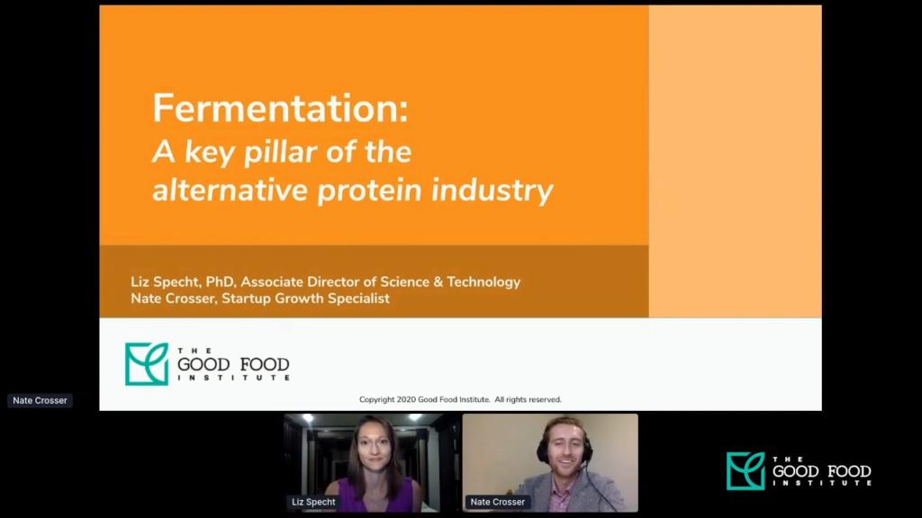 Screenshot from the fermentation 101 webinar