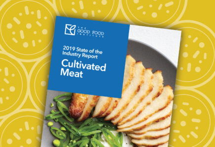 Cultivated Meat State of the Industry Report cover with vector graphic background