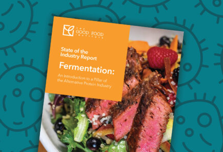 Fermentation state of the industry report cover with vector graphic background