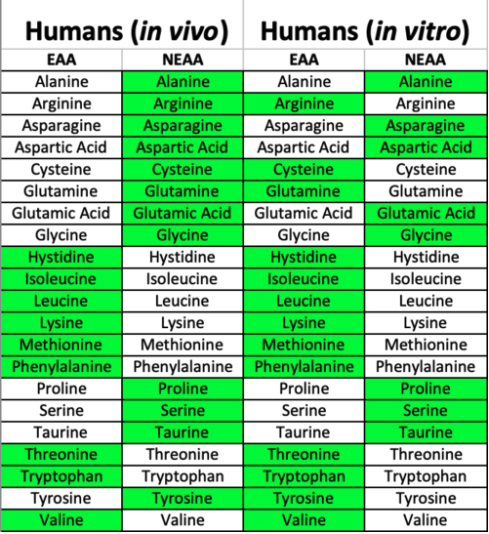 Table indicating essential and non-essential amino acids in vivo and in vitro