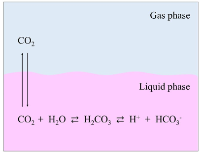 Illustration of buffering between gas and liquid phase