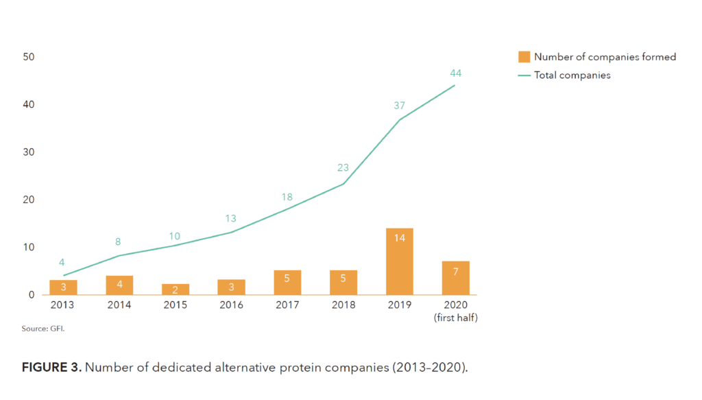 Graph of the rise of dedicated companies involved in fermentation for alternative protein applications from 2013 to 2020.