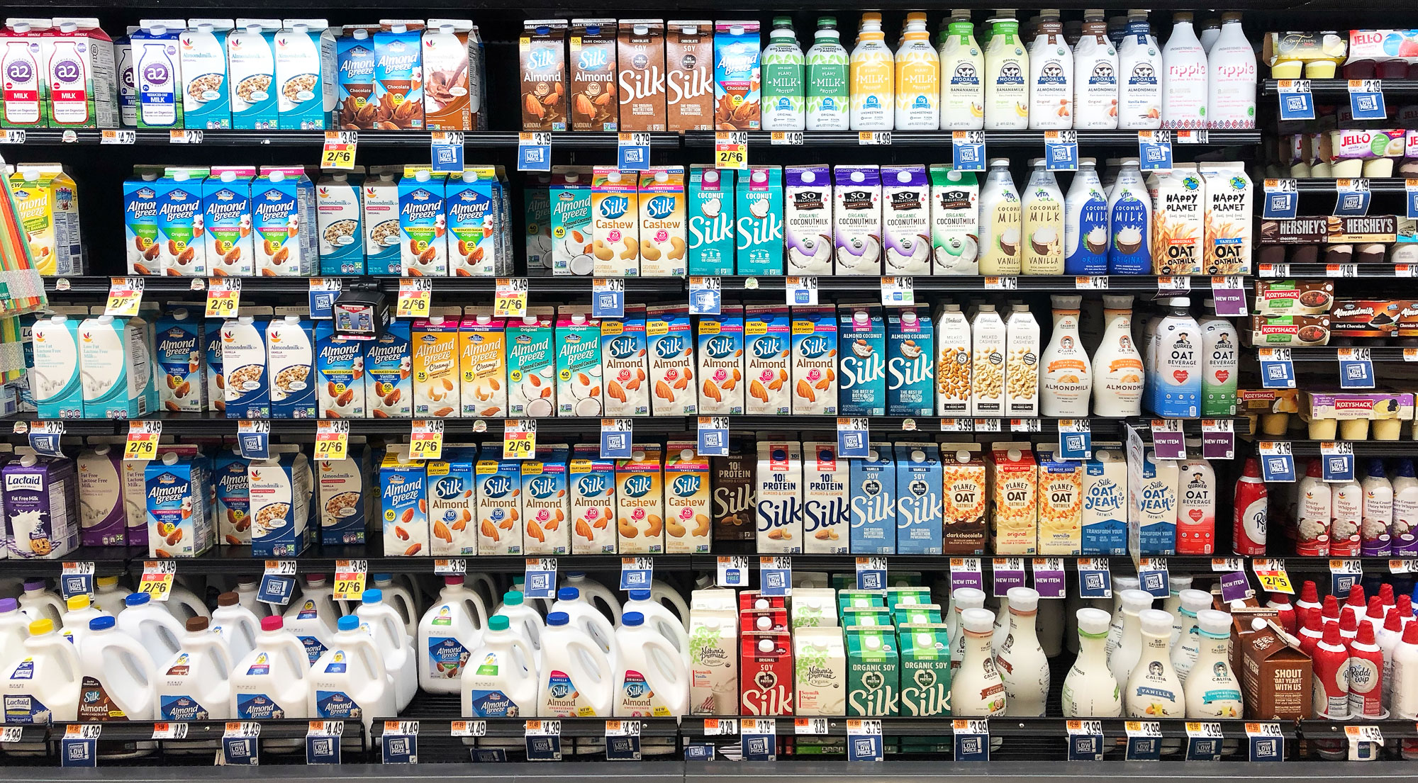 Plant-based milk is merchandised next to cow-based milk at giant foods.