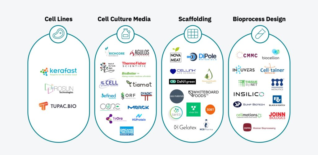Graphic of companies with initiatives in cultured meat (emergence of a commercial ecosystem)