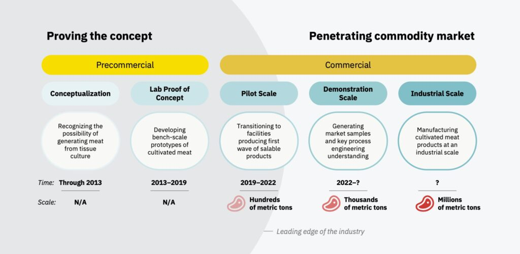 Timeline of the commercial timeline and leading edge of cultivated meat (also known as cultured meat) production