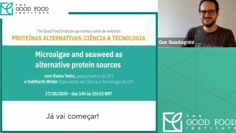 A screenshot from a webinar about using seaweed and microalgea for alt proteins