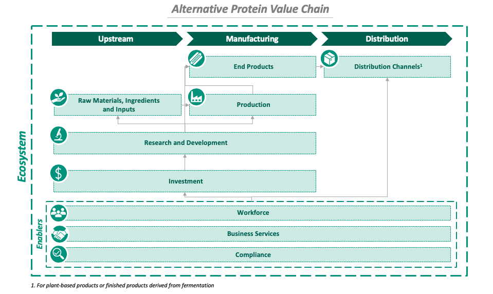 Diagram of the alternative protein value chain