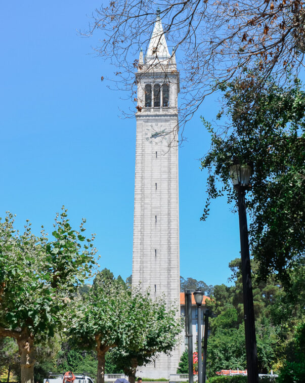 University bell tower against a blue sky