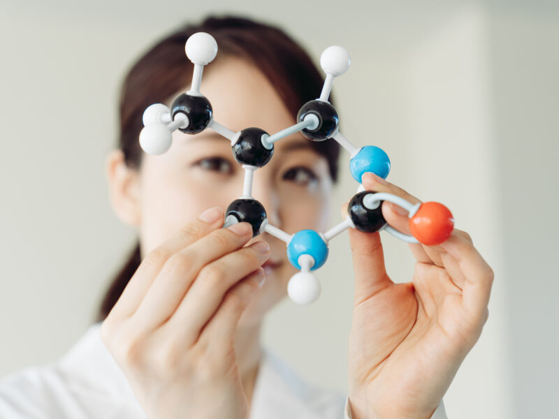 Scholar holding molecular model, representing biomedical science concept