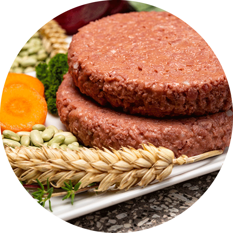 Plant based soy protein burger patties on a white plate next to wheat, legumes, carrots and beets