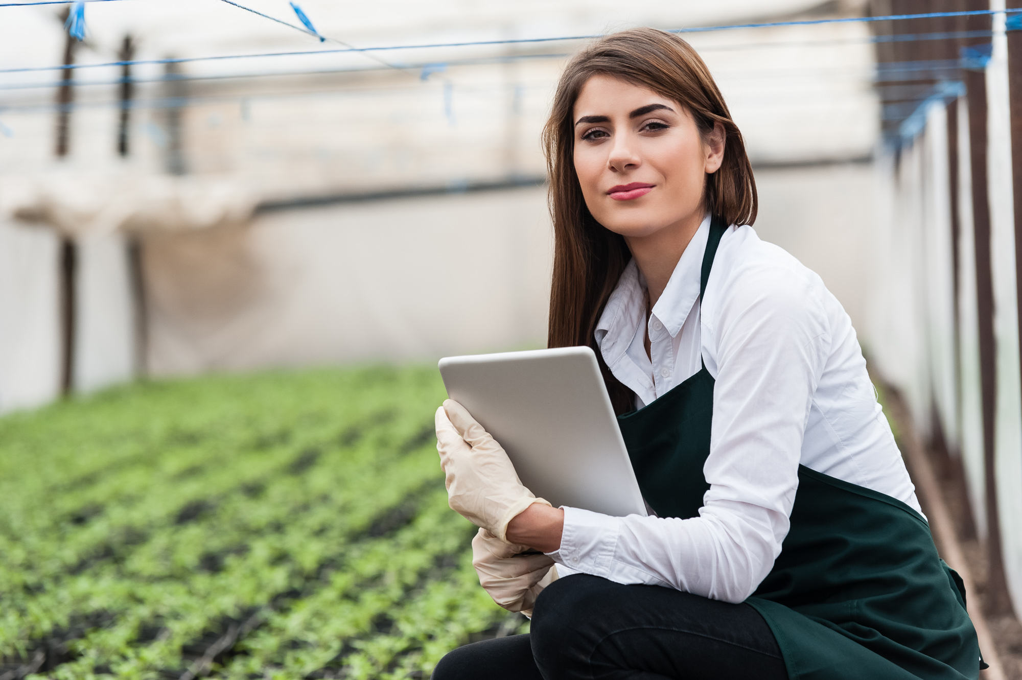 Female researcher in an indoor growing facility kneeling in front of rows of crops