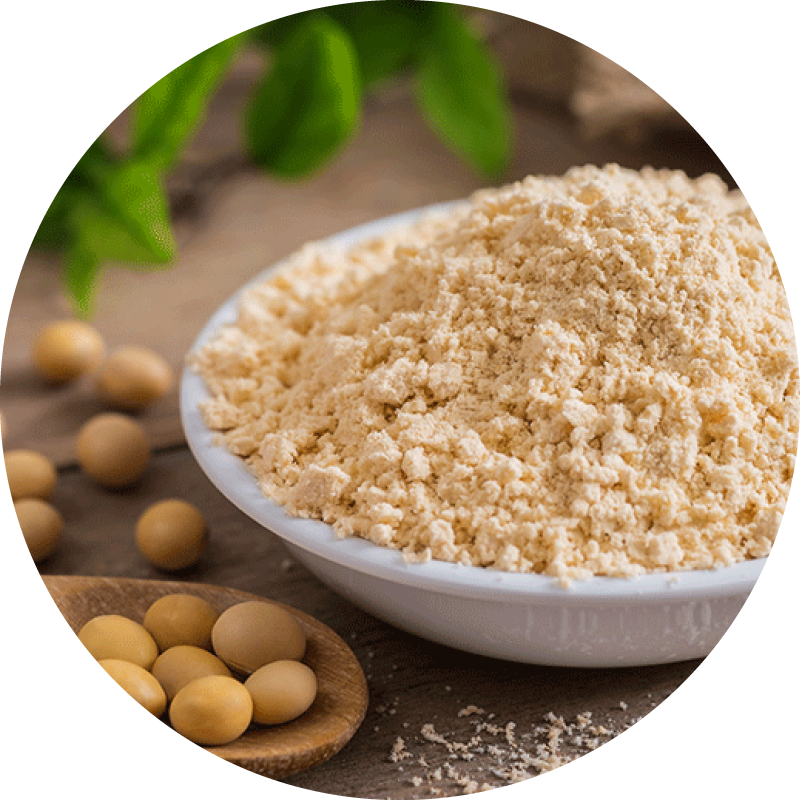 Soy flour in a bowl with a spoon holding soybeans