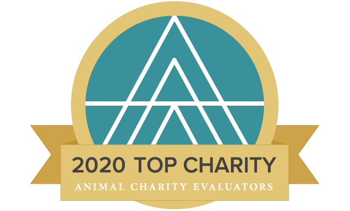 2020 Top Charity seal