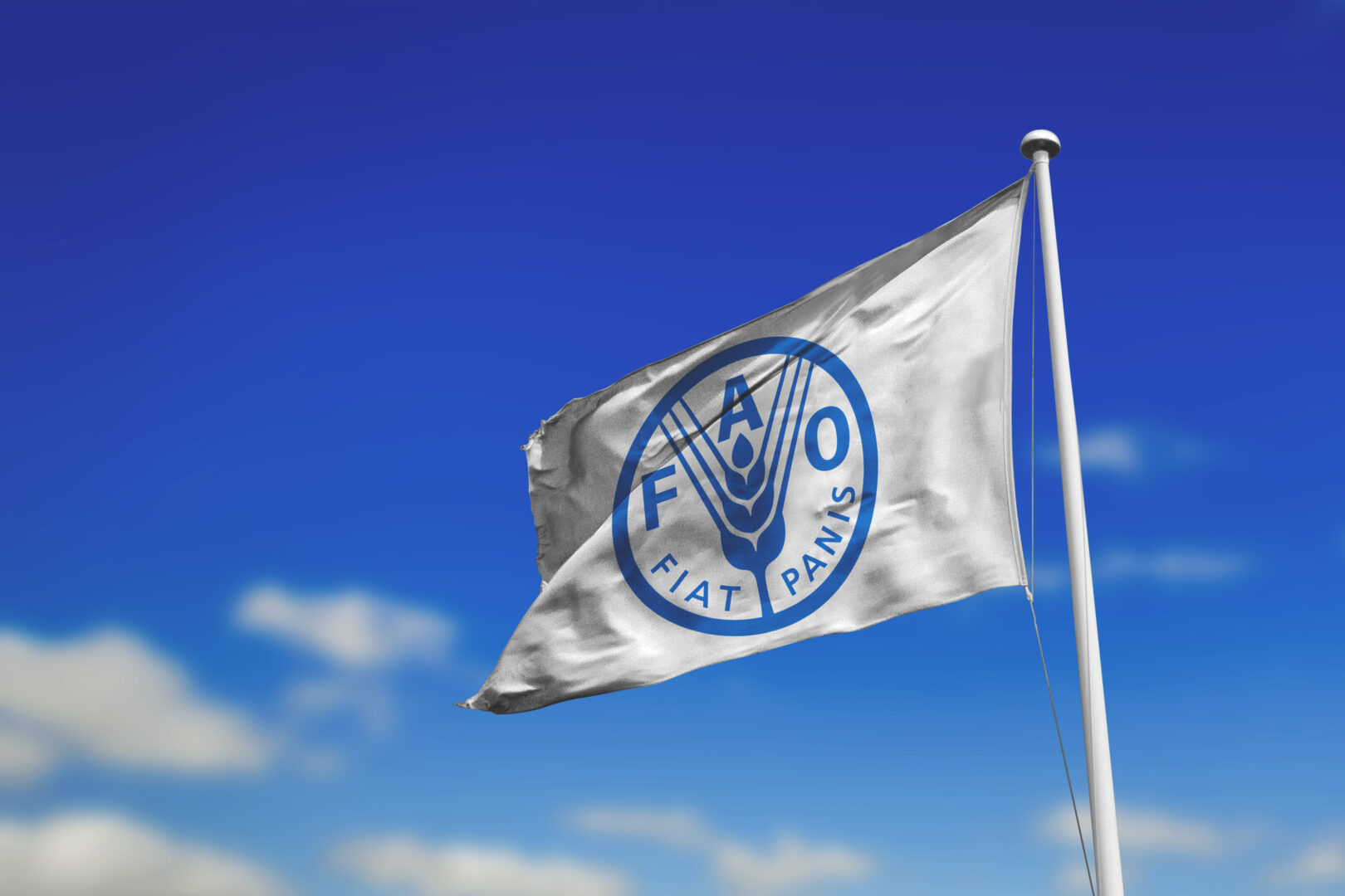 Fiat panis flag