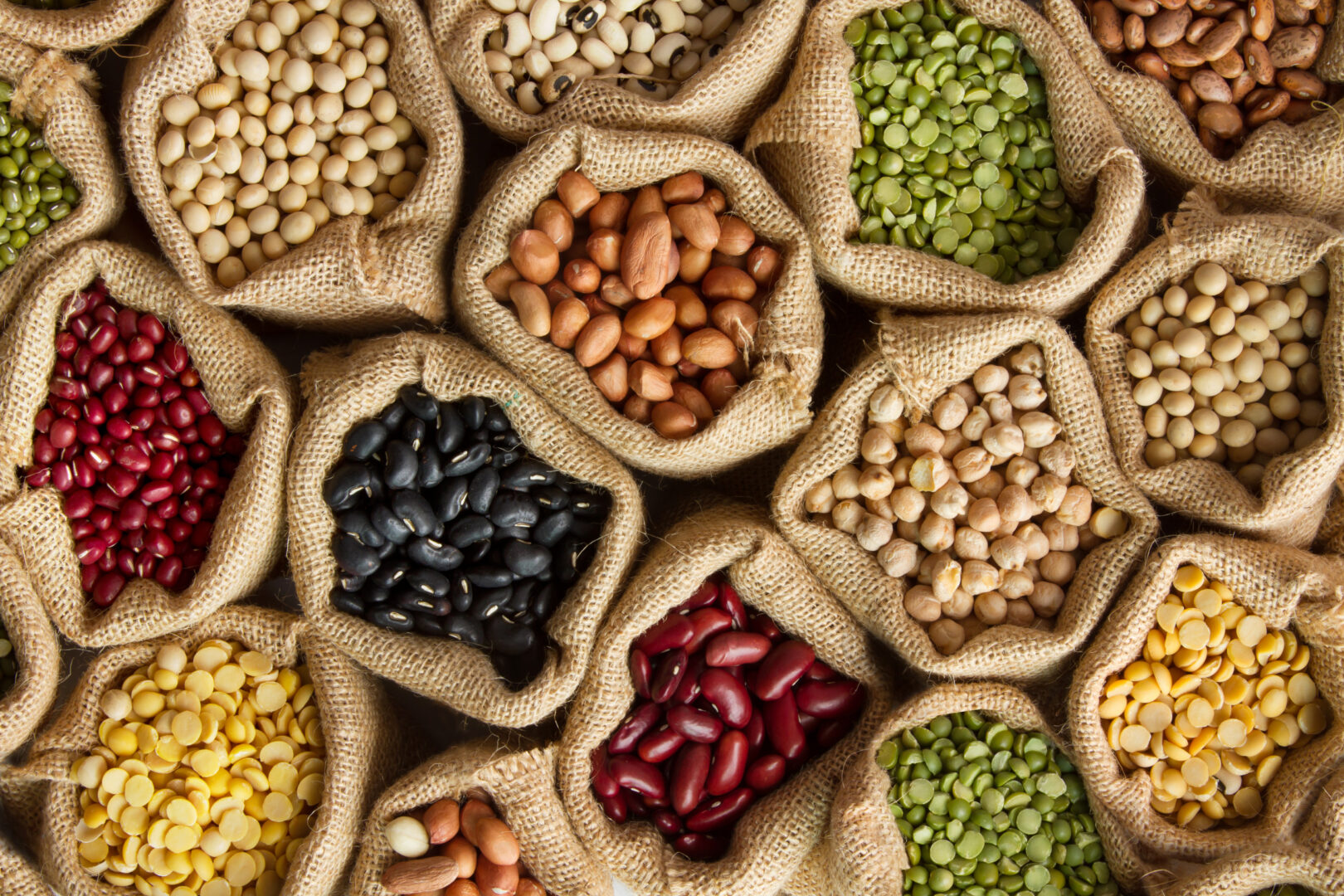 Variety of pulses/beans in bags