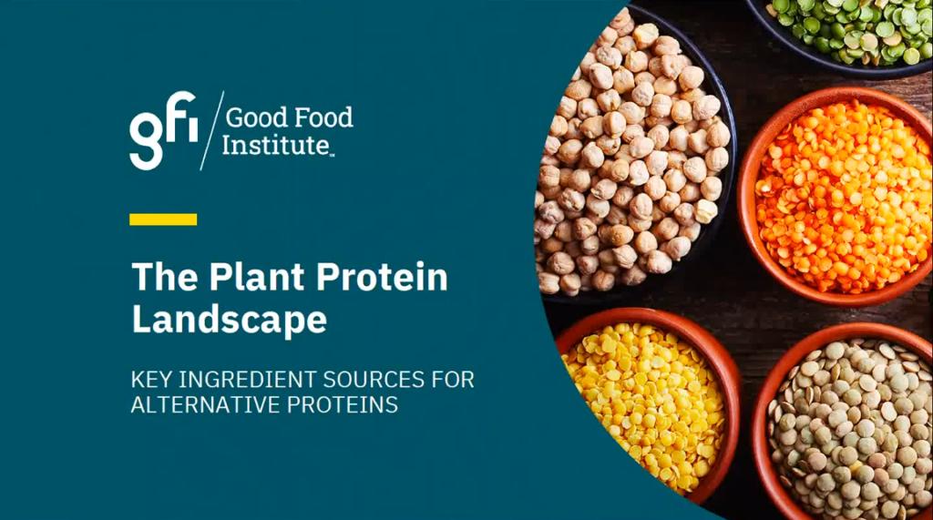 Screenshot from plant protein landscape webinar