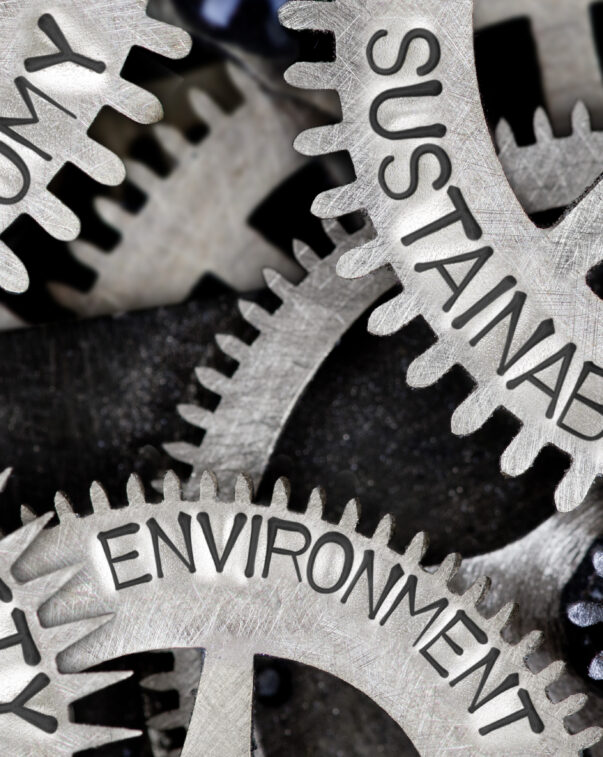 Gears labeled with economy, sustainability, society, environment