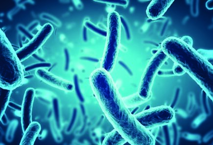 Microbial proteins